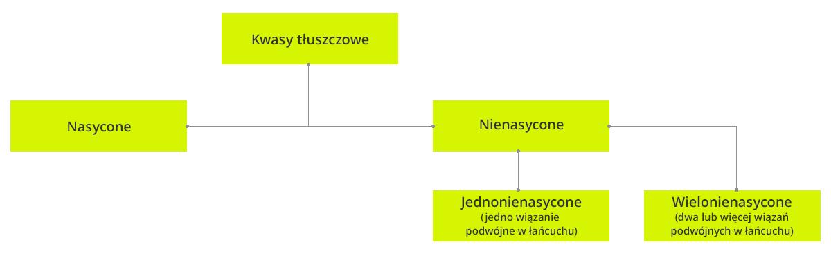 podzial_tluszczow