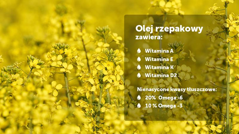 Olej rzepakowy witaminy